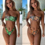 Bikini Leopard Print Strapless Two Piece Swimsuit
