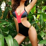 Women's Halter One-pieces , Color Block Push-up Nylon/Polyester Black