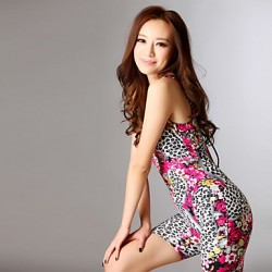 Women's Straped One-pieces , Animal/Floral Nylon/Others/Polyester/Spandex Pink/Red