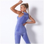 Seamless Knitted Sexy Crew Neck Vest Yoga Suit Sport Running Top Women